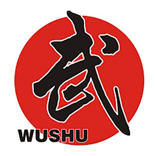 wushu - Teoria non solo tecnica